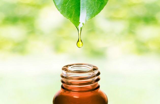 Масло чайного дерева для отбеливания зубов подойдет не всем